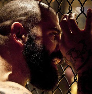 Zakłady bukmacherskie na MMA
